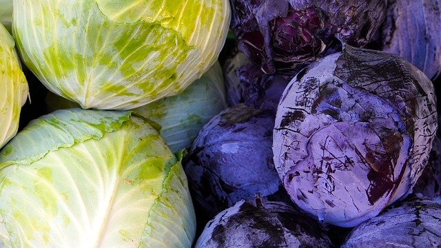 Cure hangover with Cabbage